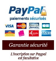 LogoPaypal